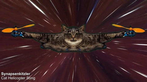 Cat Helicopter Song Photo by Synapsenkitzler